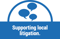 supporting-litigation