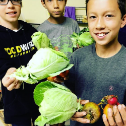 Students gardening at Journey School, a Waldorf education public charter school in California